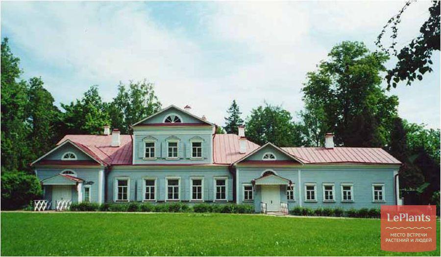 газон в Абрамцево
