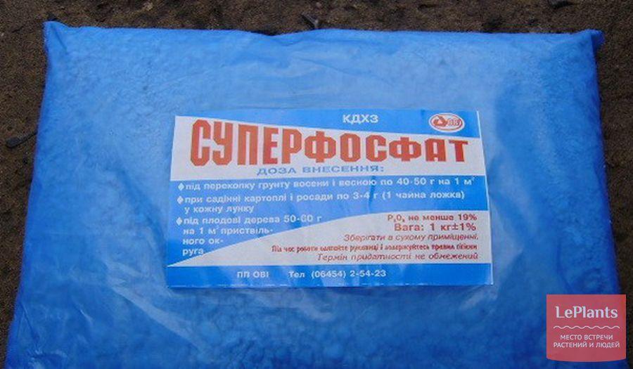 суперфосфат - leplants.ru