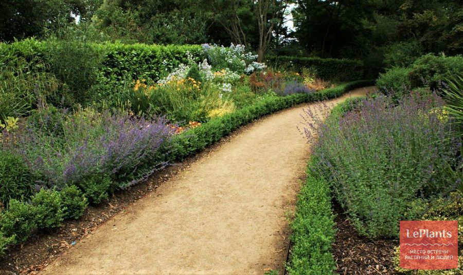 как оформить садовые дорожки