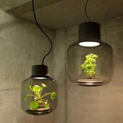 Закрытые вазы-светильники для городских жителей — новинка от немецких дизайнеров