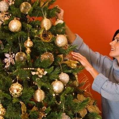 Почему не стоит выбрасывать живую елку после праздников?