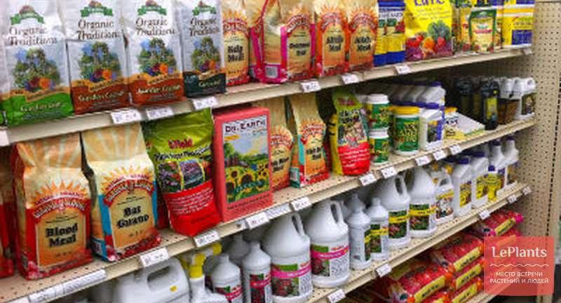 Применение удобрений для комнатных растений