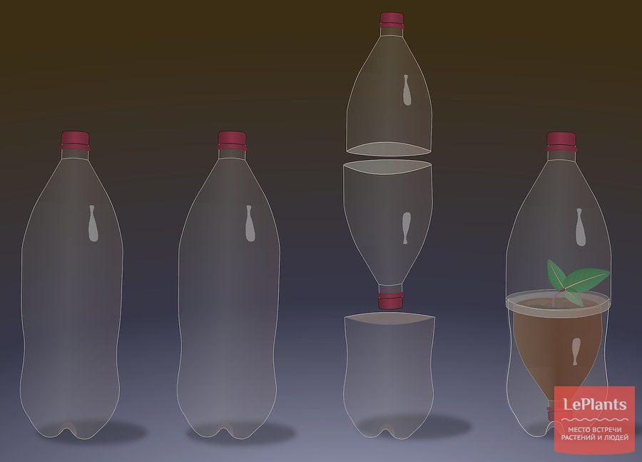 мини тепличка из бутылки
