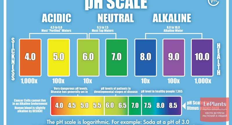 Уровень pH в биопонных растворах