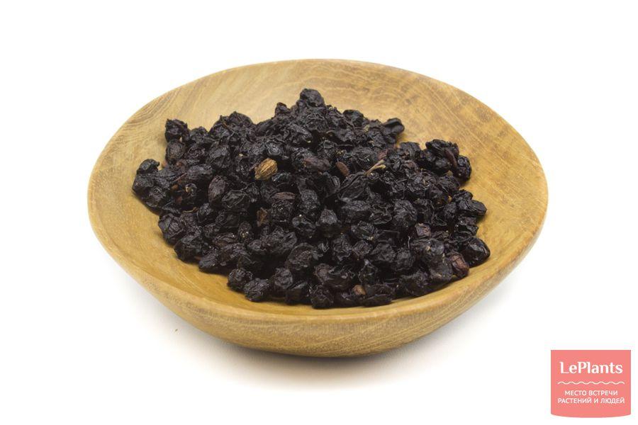 Сушеные плоды Бузины