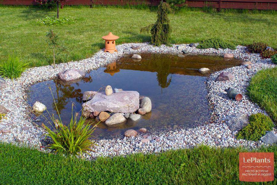 садовые водоемы