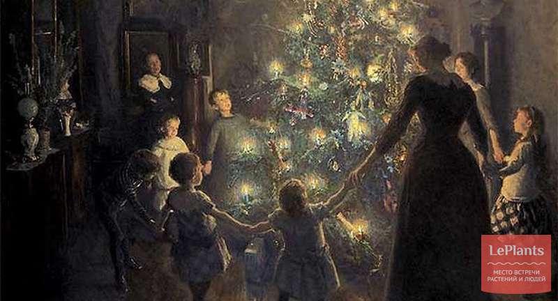 Новогодняя ель — древние корни традиции