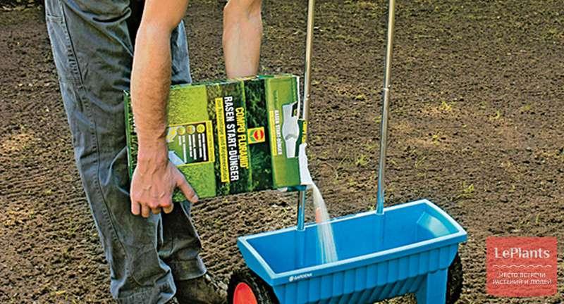 Удобрения для газона: правильный подбор и использование с весны до осени
