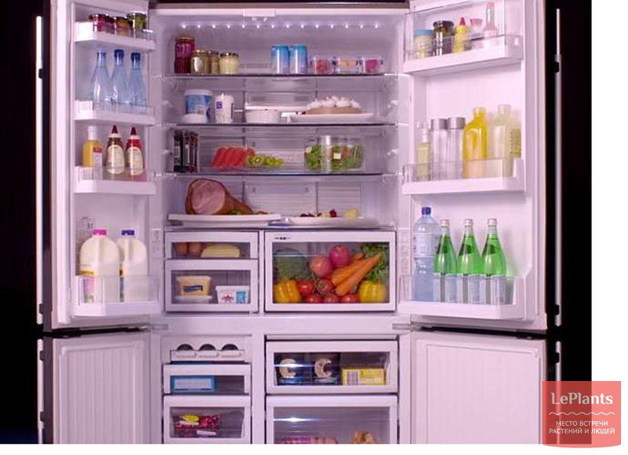 хранение перца в холодильнике на зиму