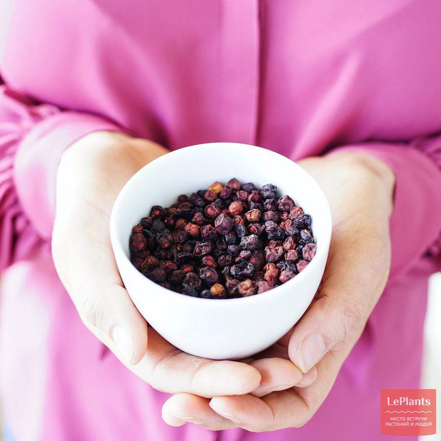 Сушеные плоды Лимонника китайского